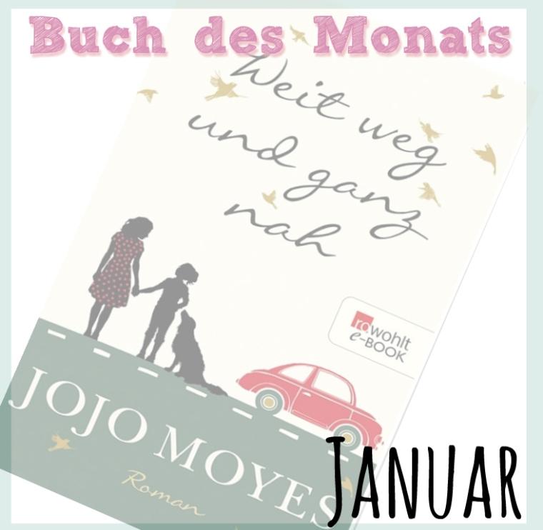 buch-des-monats
